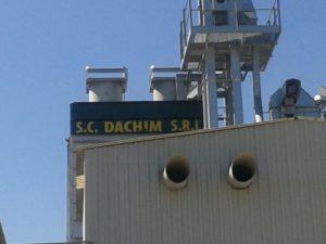 Flat Dachim 7
